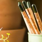 Bleistift mitPflanzensamen 4